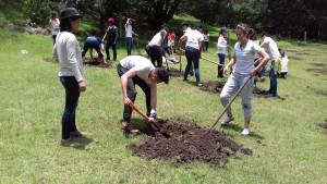Resforestacion Eventos Sustentables