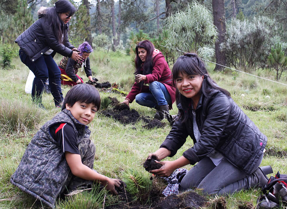 Redorestación Centro Citibanamex