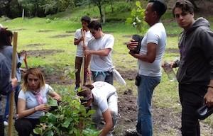 Trabajo en equipo, eventos sustentables